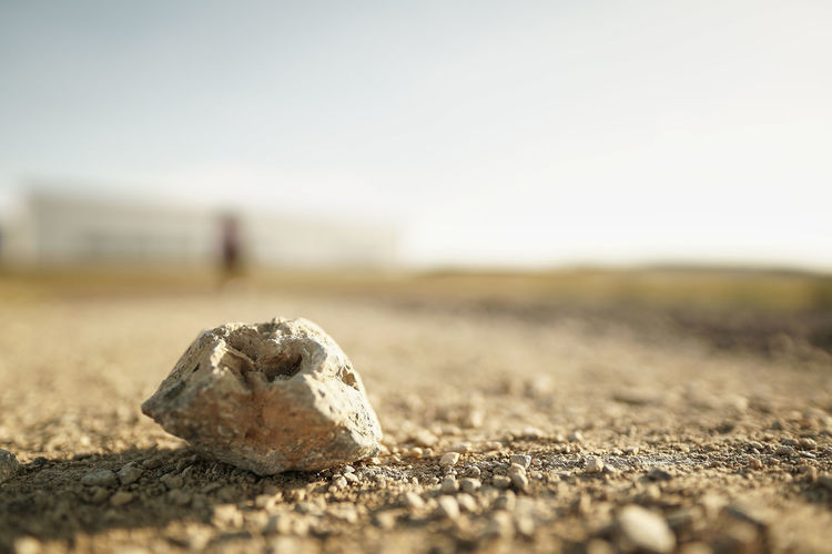 Nur ein Stein... Selective Focus Solid Day Close-up Nature Land Rock No People Rock - Object Sky Outdoors Surface Level Stone - Object Single Object Focus On Foreground Stone Beach Textured  Sand Geology Pebble EyeEm Best Shots My Best Photo