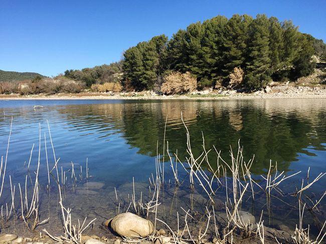 Tranquilla serenità gita al lago