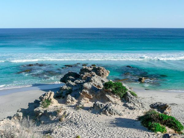 Kangaroo Island Sea Horizon Over Water Nature Beach Rock - Object Beauty In Nature Scenics No People Tranquil Scene Day Sand Clear Sky Tranquility Water Sky Blue Outdoors Wave Tree