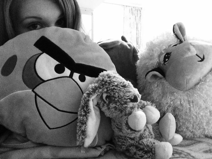 Angry Birds Toys Eyes Happy