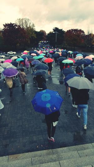 Umbrella People Rainy Day Cloudy Olympic Park Seoul