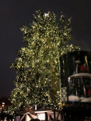 Weihnachtsmarkt Gandarmen Markt, Berlin Christmas Tree Glühwein Tree Illuminated Christmas Christmas Lights Germany🇩🇪