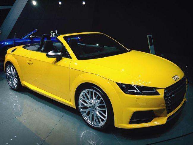 Audi ♡ Cars