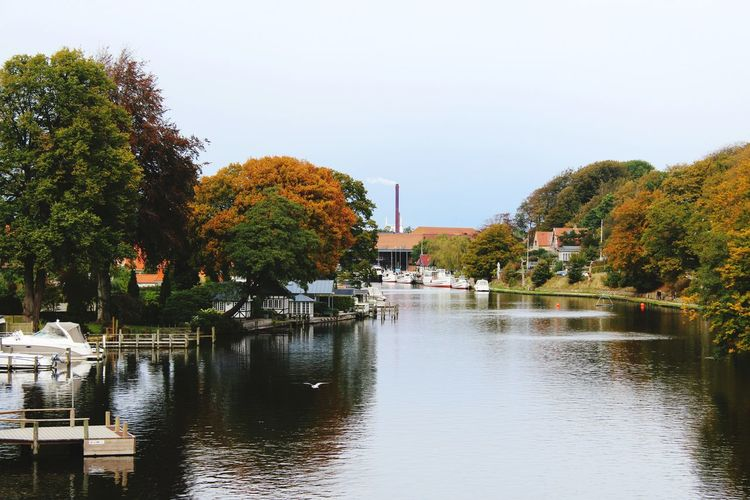From My Point Of View Denmark Nature Lake Autumn Fall I Love My City