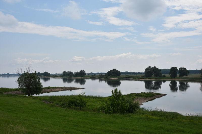 Bridge Elbe Water