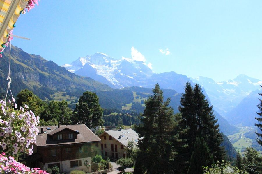 Mountain ranges viewed from Wengen, Switzerland. Beauty In Nature Blue Day Growth Idyllic Jungfrau Landscape Mountain Mountain Range Nature No People Outdoors Peaceful Residential District Scenics Schweiz Sky Snowcapped Mountain Suisse  Switzerland Tranquil Scene Tranquility Tree Village Wengen