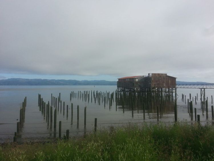 Outdoors Cloud - Sky No People Sea Water Beach Sky Nature Grass Horizon Over Water Architecture Reflection Nature Tranquil Scene Water's Edge Northcoastrecovery Columbia River Astoria, Oregon Astoria, OR Environment Tide Beauty In Nature Fog Day Scenics