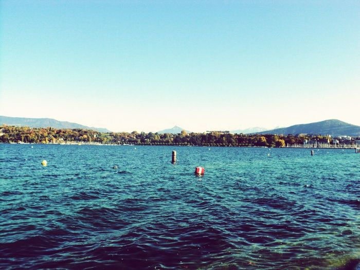 Geneva & the