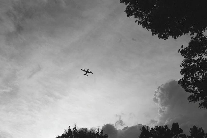 plane and sky