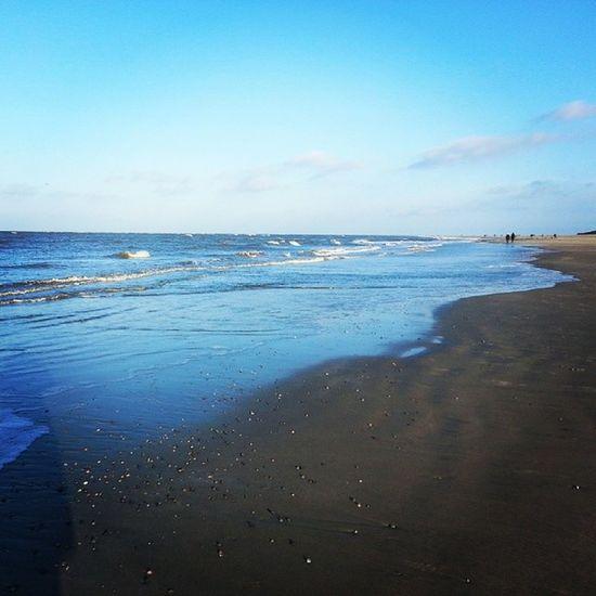 #baltrum #nordsee #northsea #strand #beach #winter Beach Winter Strand Baltrum Northsea Nordsee
