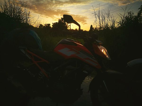 Sunrise Ktm Duke 250 Cooling  PalakkadSilhouette Tree No People Spooky Outdoors Sky Day