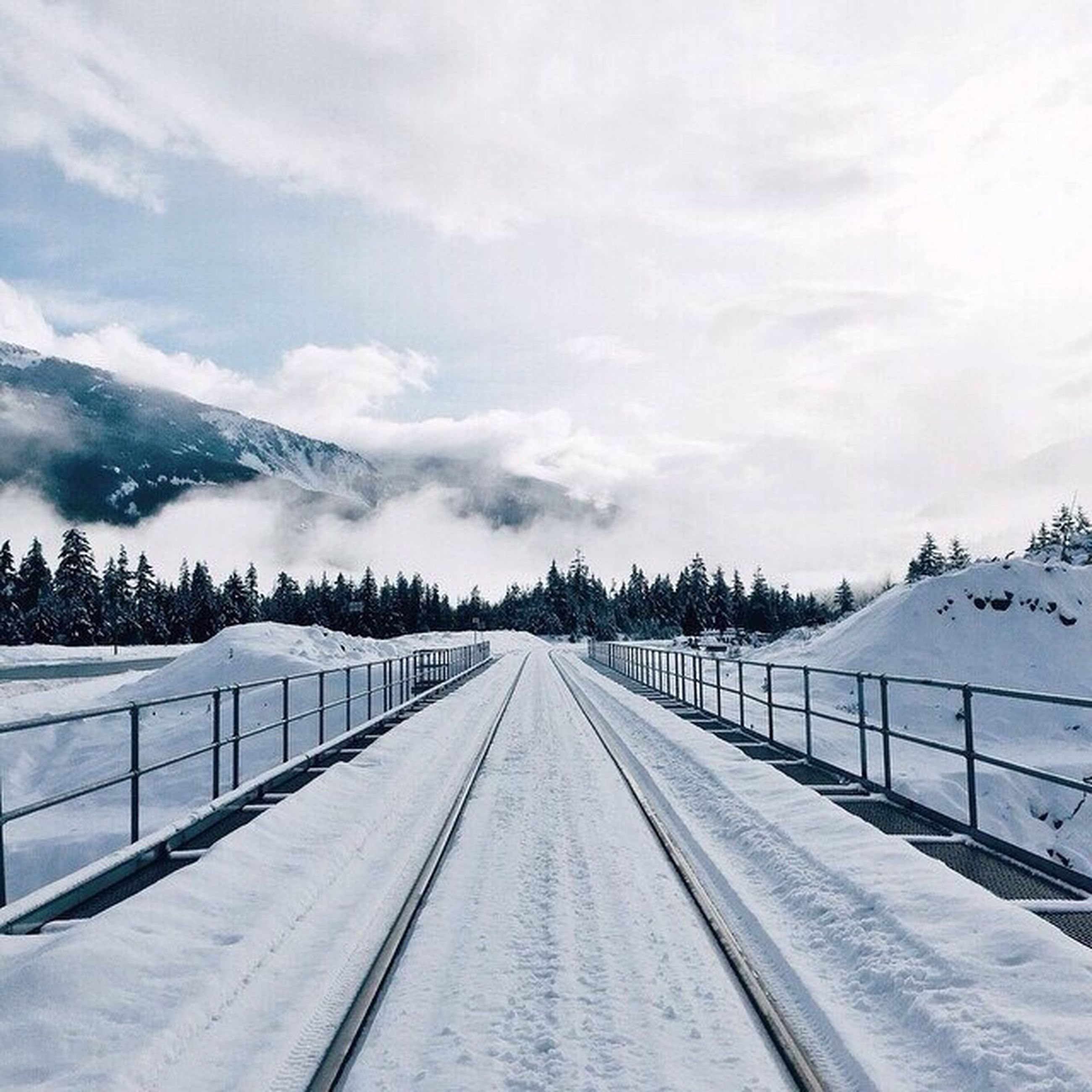 the way forward, snow, winter, cold temperature, sky, diminishing perspective, vanishing point, weather, cloud - sky, season, transportation, tranquil scene, tranquility, nature, railing, road, covering, tree, beauty in nature, cloudy