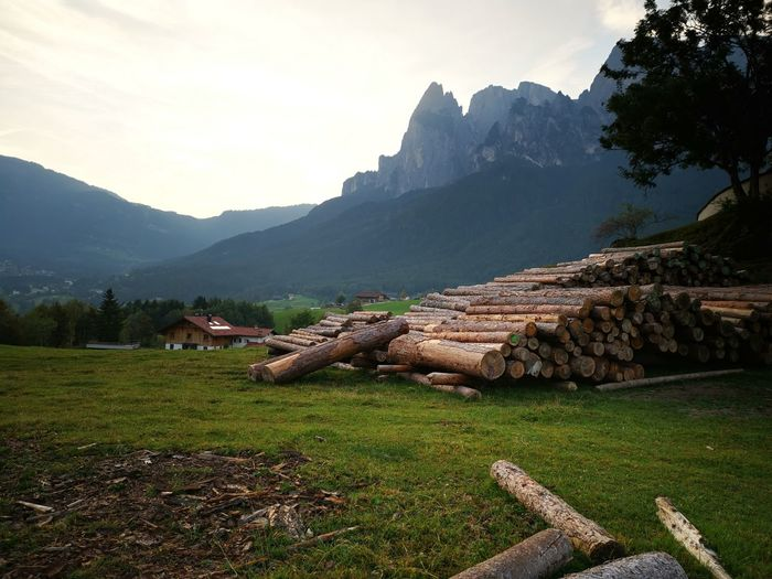Stack of logs on field by mountains against sky