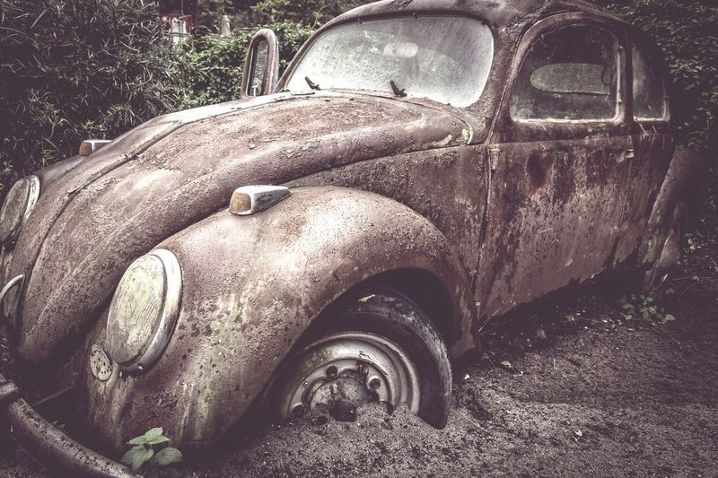 https://youtu.be/nrmw1iEemDM Car Transportation Land Vehicle Damaged Obsolete Abandoned Love Bug Love Bug❤ VW VW Käfer Vw Bug Bug Lost And Found Urban Decay History Photography Beauty Of Decay Urbexphotography Urbex Colorful Lost Place Abandoned Places EyeEm Gallery Vergessene Orte EyeEm Best Shots