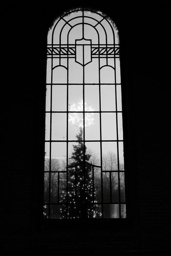 Train Station Railway Station Window Looking Out Of The Window Blackandwhite Black And White Christmas Lights