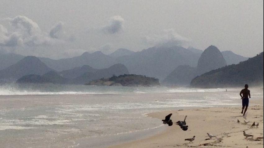 """FREEDON "" Sea Sky Day Bird Beach Leisure Activity EyeEm Ready"