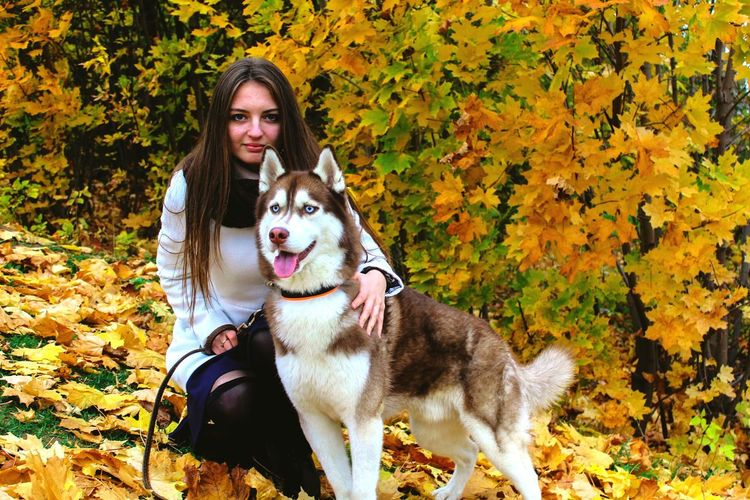 Portrait Of Young Woman With Siberian Husky On Fallen Leaves During Autumn