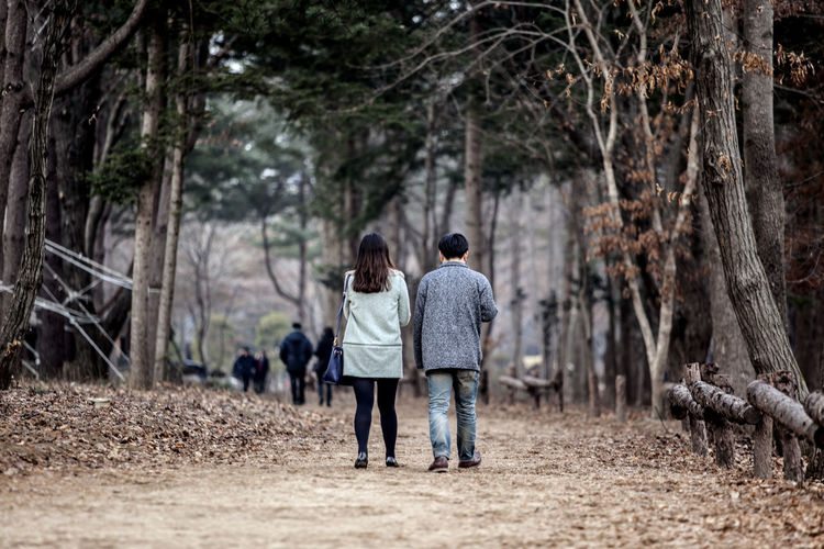 Alone Carefree Casual Clothing Escapism Forest Front View Full Length Leisure Activity Lifestyles Man And Woman Men Nami Island Occupation Real People Rear View Showcase: January Side View Standing Togetherness Trail Walk Walking Winter Women
