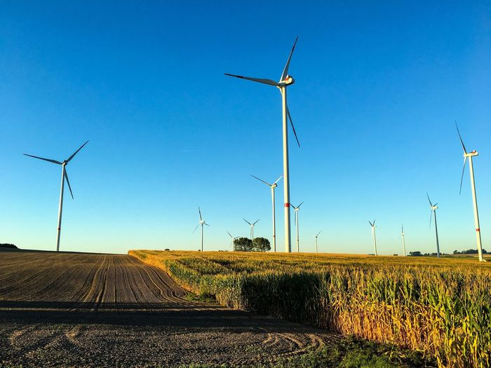 Windmills on field against clear blue sky on sunny day