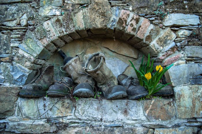 Boots Colchicum Countryside Views Farm Humor Rural San Rocco Autumn Crocus Bottle Country Life Countryside Day Flower Installation Multi Colored Nature No People Old Boots Outdoors Rural Scene Stone Wall Yellow