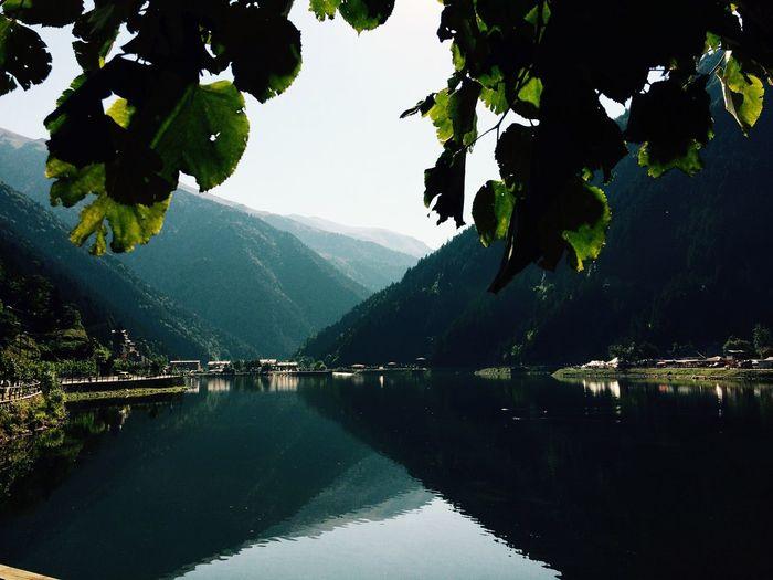 Nature Nature Photography Naturelovers Natural Beauty Natural Green Green Nature Forest Lake Blue Sky Karadeniz Uzungöl Trabzon Turkey