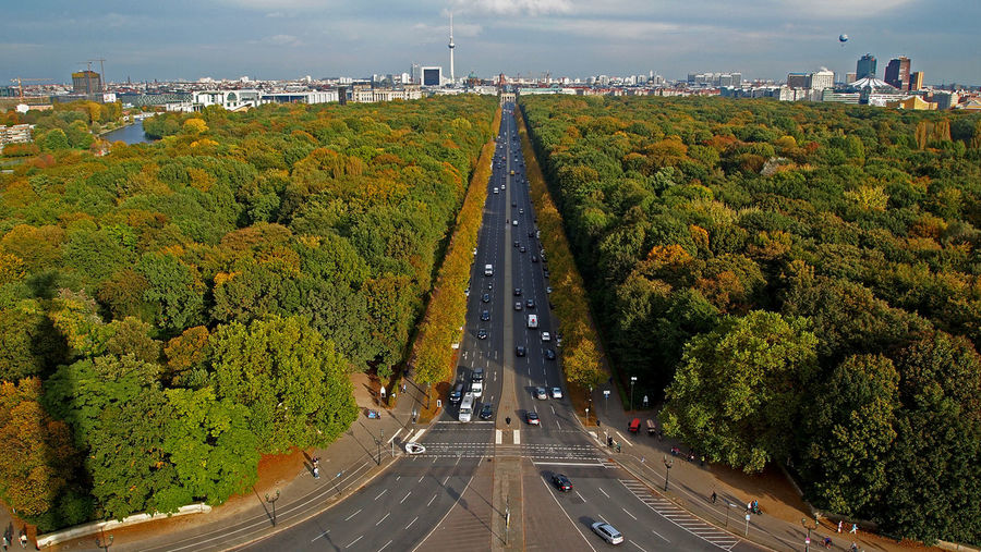 Road Amidst Trees In City Against Sky