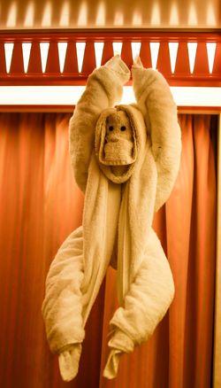 Random Randomness Towel Towel Animal Carnival Spirit Cruise Ship Awesome Awesomeness Monkey Monkeying Around