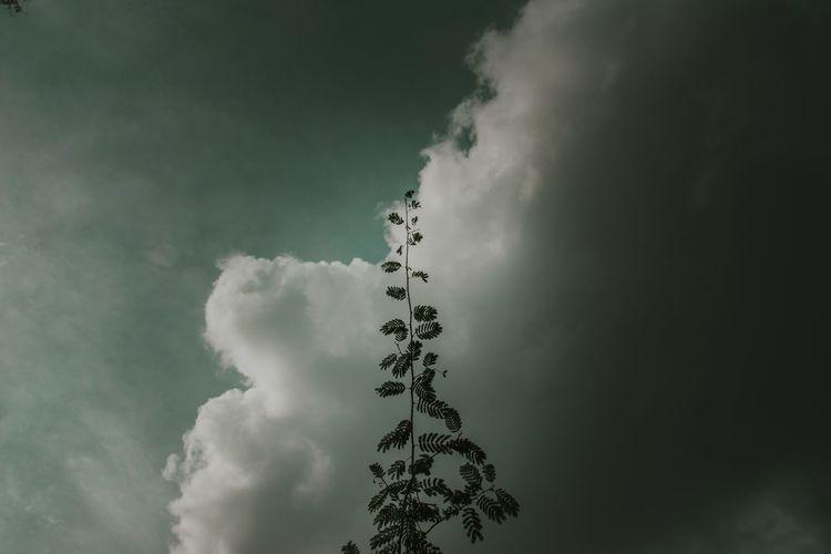 Calm wind Sky