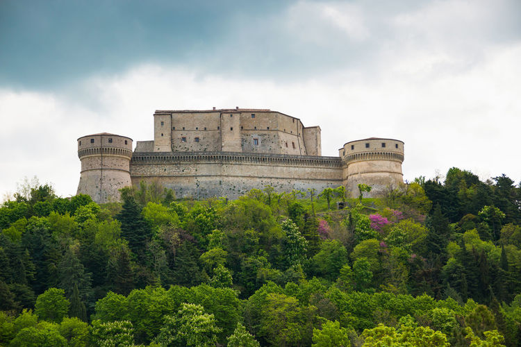 Ancient Architecture Building Exterior Built Structure Castle Cloud - Sky Day Fort Fortress Growth History Italy Low Angle View Nature No People Outdoors Rimini San Leo Sky Travel Destinations Tree