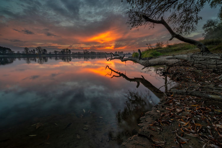 Sunset Sky Water Cloud - Sky Orange Color Scenics - Nature Beauty In Nature Tranquility Tranquil Scene Reflection Tree Nature Lake No People Plant Non-urban Scene Idyllic Outdoors Land Wisła Wisla Wisła River Vistula Vistula River Polska