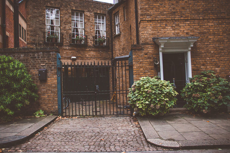 Architecture Built Structure Building Exterior Building Plant Entrance Door Brick No People Nature Wall Footpath Growth Outdoors Window House Brick Wall Direction Day City London Streets Backyard
