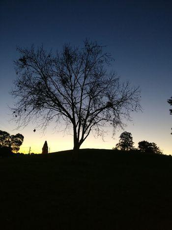 dusk or dawn? International Park Sydney