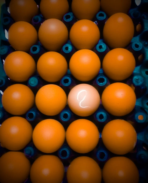 Eegs Food Healthy Eating Texture Still Life Color Backgrounds Cooking Ingradients Protein Nature Number Chickens Circles Privotal Ideas