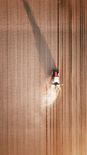 High angle view of people on agricultural landscape