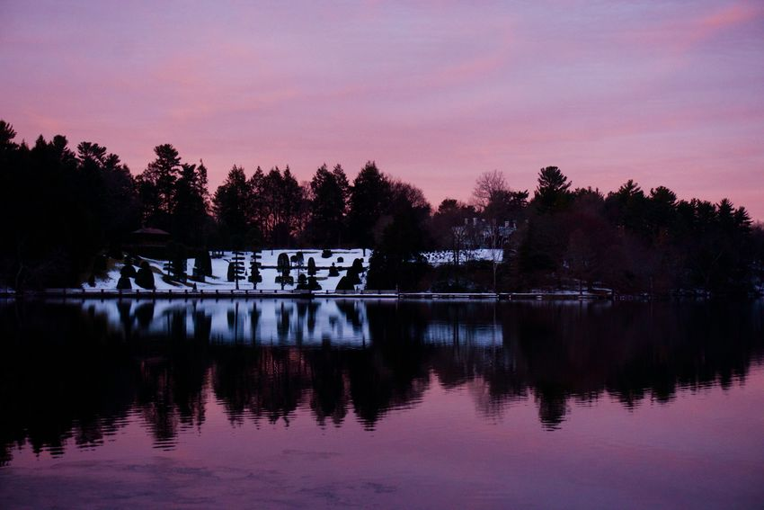 Beauty In Nature Lake Morning Light Pink Color Reflection Sky Snow Covered Sunrise Topiarygarden Tranquil Scene Tranquility Water