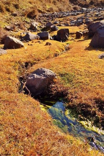 Adventure in the Mountain of Stone Columns. 2. Ying County Shanxi Province Adventure Nature Outskirts Stones Grass Autumn Creek
