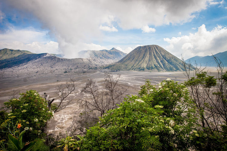 mount bromo, indonesia Cloud - Sky Day Landscape Mountain Nature No People Outdoors Sky Travel Destinations