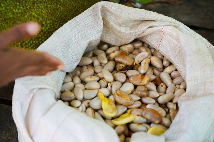Human Hand Hand Human Body Part One Person Food Real People Food And Drink Unrecognizable Person Wellbeing Healthy Eating High Angle View Nut Nut - Food Lifestyles Outdoors Nature Day Freshness Holding