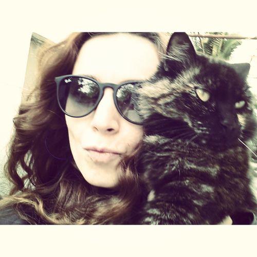 That's Me Friend Enjoying Life Cats