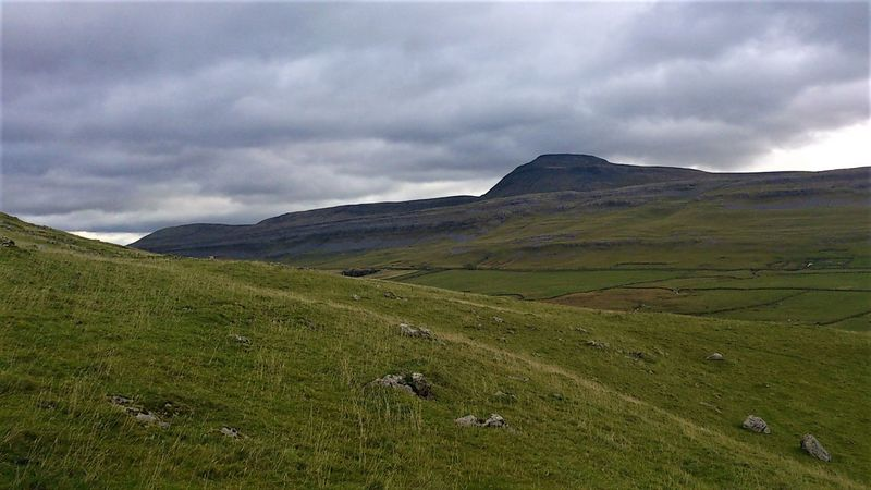 3 Peaks Pen-y-ghent The Darkness Within Beauty In Nature Cloud - Sky Day Field Grass Green Color Landscape Mountain Nature No People Outdoors Scenics Sheep Sky Tranquil Scene Tranquility