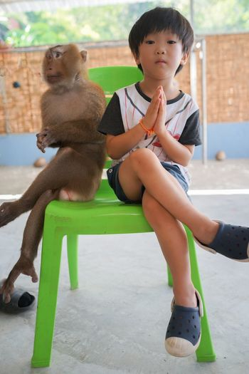 My son & a monkey. Phuket Thailand Boys Casual Clothing Child Childhood Chimp Cute Day Front View Full Length Innocence Leisure Activity Looking Males  Men Monkey One Person Real People Seat Sitting