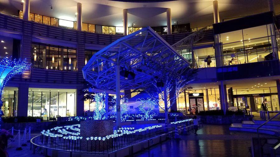 Night Christmas Lights Christmas 横浜ららぽーと イルミネーション