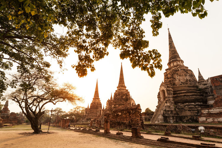 pagoda in ayutthaya world heritage site thailand Ayutthaya   Thailand Historic Park Sunset Ancient Civilization Tree Place Of Worship Old Ruin Spirituality Ancient Religion History Cultures Pagoda King - Royal Person