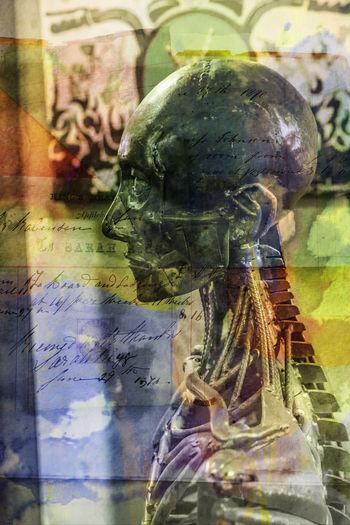 https://www.facebook.com/ludwig.metaludah?fref=nf https://metaludah.wordpress.com/ Anatomy Artist Artistic Artistic Photo Close-up Close—up Day Indoors  Iron Ironman Metal Mettalic No People No People, Outdoors Sculpture Skeleton Skull Statue Steel Steel Structure