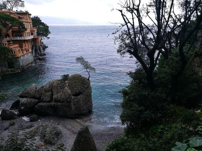 Portofino Italy Les 5 Terres Beauty In Nature Nature No People A L'ombre D'un Souvenir Méditerranée Italy🇮🇹 Lifestyles