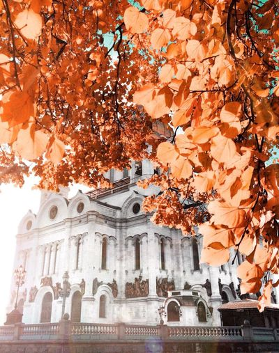 Cathedral Of Christ The Saviour Architecture Nature Nature_collection Sky Streetphotography No People Travel Destinations Russia Taking Photos Moscow