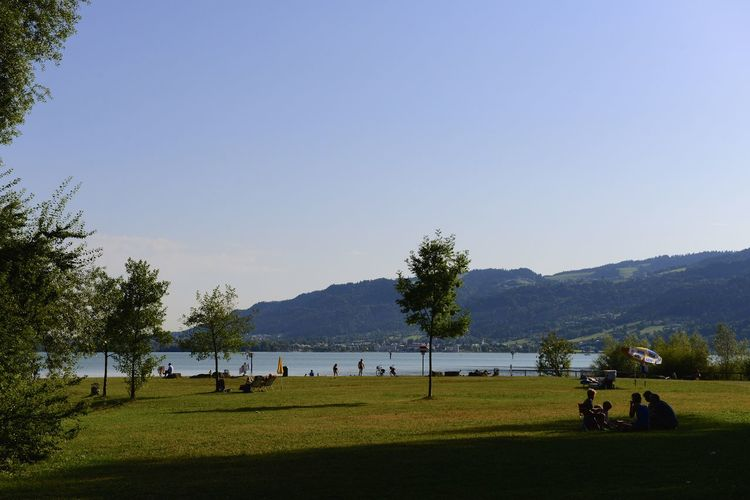 Bodensee Germany Holiday Bodensee Bodenseeregion Clear Sky Germany Grass Kressbonn Kressbonn Am Bodensee Lake Nature Outdoors Scenics Sky Tranquility Tree Water