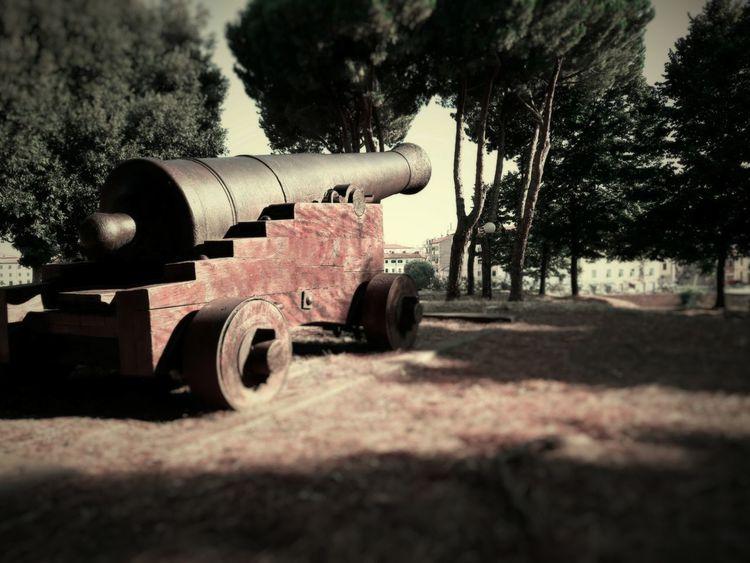 Cannone Monumento Livorno Italy Fortezza Vecchia