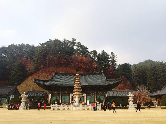 Korea Kangwondo