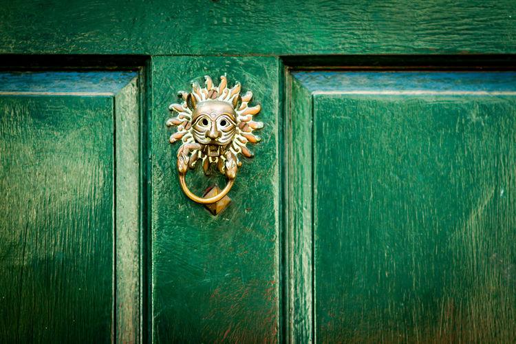 View of an animal representation on green door